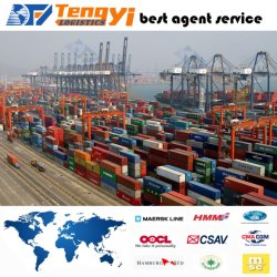 エストニアへの海Transport Cheap Freight Forwarder中国Shipping