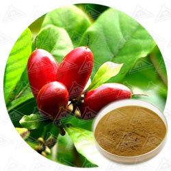 A alta concentração de pó de proteína Miraculin Milagre Extrato de Frutas