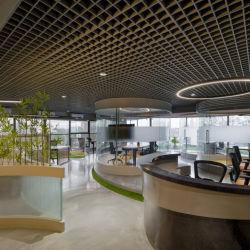 Le bois d'aluminium en bois au plafond à cellules ouvertes Decoration Material