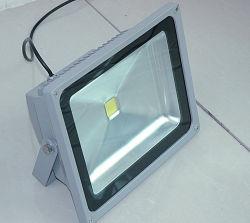 Foco LED/luz de las inundaciones para la construcción y el jardín
