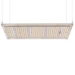 La migliore scheda LED di Meanwell 220W Quantum della serra di orticoltura commerciale coltiva l'indicatore luminoso