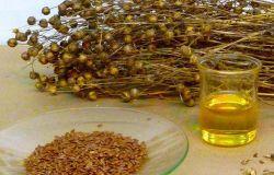 استخراج بذور الفاكس/ زيت بذور الكتان Seco-Isolariciresinol Diglucoside/Lignans/SDG