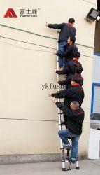 Het vouwen van Gearticuleerde Ladder met 3.8m Lengte