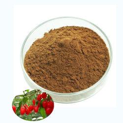 Polisaccaridi di Wolfberry di alta qualità estratto di erbe per bestiame Ningxia Barbury Estratto di frutti di bosco
