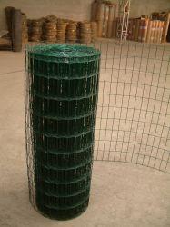 Revestimento de plástico de PVC de malha de arame soldado com um preço baixo