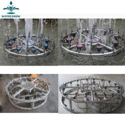 Jardin des Plantes ornementales Petite musique de danse des feux de multicolore Fontaine à eau