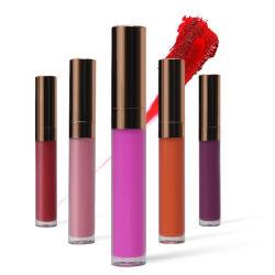 OEM Kosmetische Waterdichte Make-up en de Langdurige Vloeibare Lippenstift van de Steen van het Fluweel Kissproof