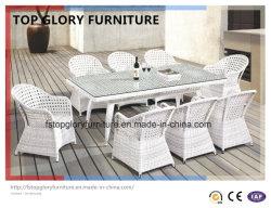 Dîner en rotin blanc&meubles en osier (TG-1612)