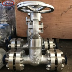 API600圧力シールの適用範囲が広いウェッジの鋳造物鋼鉄ゲート弁