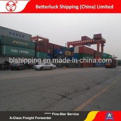От Китая до Сербии Belgrad контейнерных грузов морем наземные перевозки