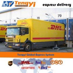 DHL и UPS и FedEx/TNT/Aramex отгрузки доставки от Китая в Чешской Республике/Дания/Джибути/Доминика