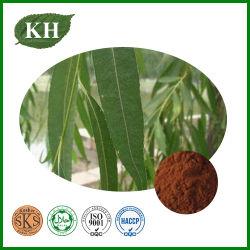 Top-grade White Willow Bark Extract Salaris 15% ~98%