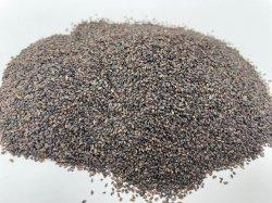 뜨거운 판매 중국 약초 의학 말린 허브 카이 지 아시아성 식물 종자 정액 Plantaginis