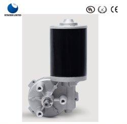 Eléctrico/eléctrico 24/12V CC Gusano Motorreductor para puertas de garaje