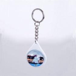 Le plastique&Globe acrylique Key Ring