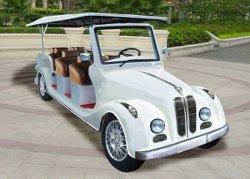 Luxury 8 Lugares carrinho de golfe Eléctrico (LT-S8. FB)