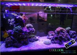 يتقدّم [ديمّبل] حوض مائيّ ضوء لأنّ سمكة حالة نموّ ([75ويث150ويث240ويث280ويث320و])