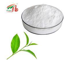 Grüner Tee-Auszug-Epicatechin-EC 95% für Eignung
