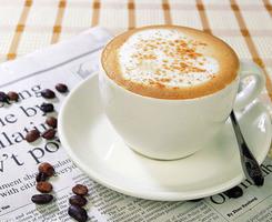 La formation de mousse d'alimentation de l'usine Creamer /poudre de café instantané