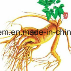 China Ginsenoside Extracto de Ginseng con precios favorables Ginsenoside Rb2/RC/RG3/RG1/RG3/RO/Rb1/RF/Re/RG2/RD/F1/F2/F3