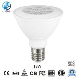 Ampoule de LED LED spotlight PAR38 18W de type SMD 1350lm Ce RoHS