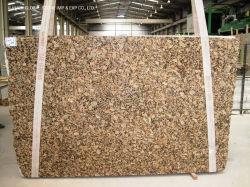 Le Brésil de gros sable dynamité/poli/flammé dalle de pierre marron/noir/or Giallo Fiorito granit pour les carreaux de plancher de comptoir mural