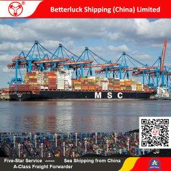 Fret maritime/logistique/DDU expédition à l'Europe/Allemagne en provenance de Chine/Guangzhou et Shenzhen/Dongguan/Foshan/Zhongshan/Jiangmen/Zhuhai/Huizhou