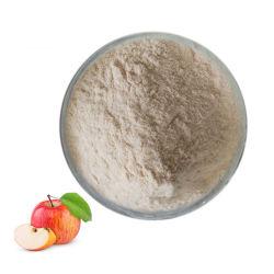 Frutas em pó orgânico pectina de maçã com preço razoável
