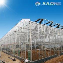 Floatglas intelligentes Venlo grünes Glashaus mit Wärme-System