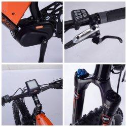26' ' pliable vélo électrique W Horse (TDE1301Z)