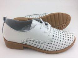 Nuevo estilo de vestido de dama moda zapatos casuales de cuero (FW-2)