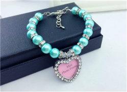 Collier Collier pour chien de la chaîne de bijoux avec éclats et petites pierres brillantes