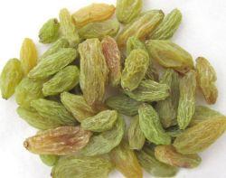Embalaje a granel Xinjiang verde pasa a la venta