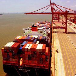 Consegna del carico di trasporto dell'oceano di logistica a Manzanillo, Messico (FCL&LCL)
