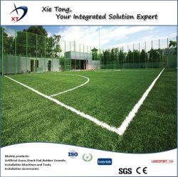 700-900 квадратных метров площади мини футбол искусственном газоне на местах