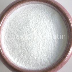 La meilleure qualité naturelle sucre Stevia édulcorants hypocaloriques