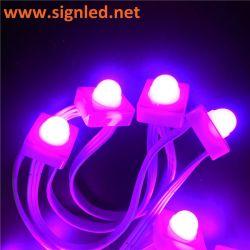 La publicité de plein air LED étanche 12 mm Pixel Point Light