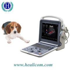 Hvet-10 Portable Doppler couleur 4D scanner à ultrasons à usage vétérinaire pour chat chien Vet