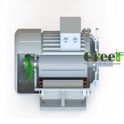 10квт с низкой частотой вращения зеленой энергии магнитом для генератора Генератор воды