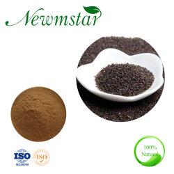 Le plantain naturel extrait de Shell de la poudre de semences/Plantain de semences de la poudre de Shell/Plantaginis Extrait de sperme