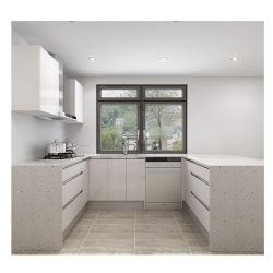 Project voor u Glass Paint Acryl roestvrij staal mooi modern Keukenkast