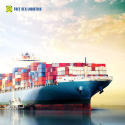 O transporte de contentores Transitário da China para a Europa ÁFRICA AMÉRICA DO NORTE