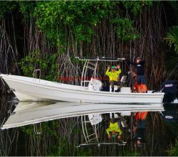 Liya 25 pies de lancha barco pesquero de fibra de vidrio de FRP en venta