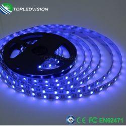 60LEDs RGBW SMD5050 /M フレキシブル LED ストリップ、屋内 / 屋外照明用