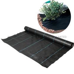Prodotto a terra intessuto pp favorevole della stuoia del Weed di protezione di controllo di Weed di agricoltura della plastica 100 di prezzi