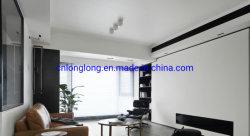 Fertighaus-Licht-Stahlkonstruktion-Landhaus-persönlicher/privater Mall/System