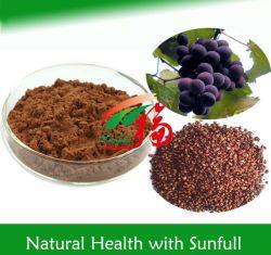 機能食糧のための95% Proanthocyanidins (OPC)のブドウのシードのエキス