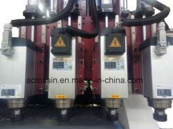 Multi Atc Workstage CNC van de Machine van de Gravure van het Proces Houten MultiRouter voor de Deur van de Houtbewerking