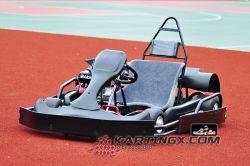 Nuovo Karting 200cc che corre il colpo 4 va Kart con l'insieme della plastica di Beatle di aggiornamento