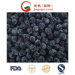 Best Selling IQF Blackberry congelados